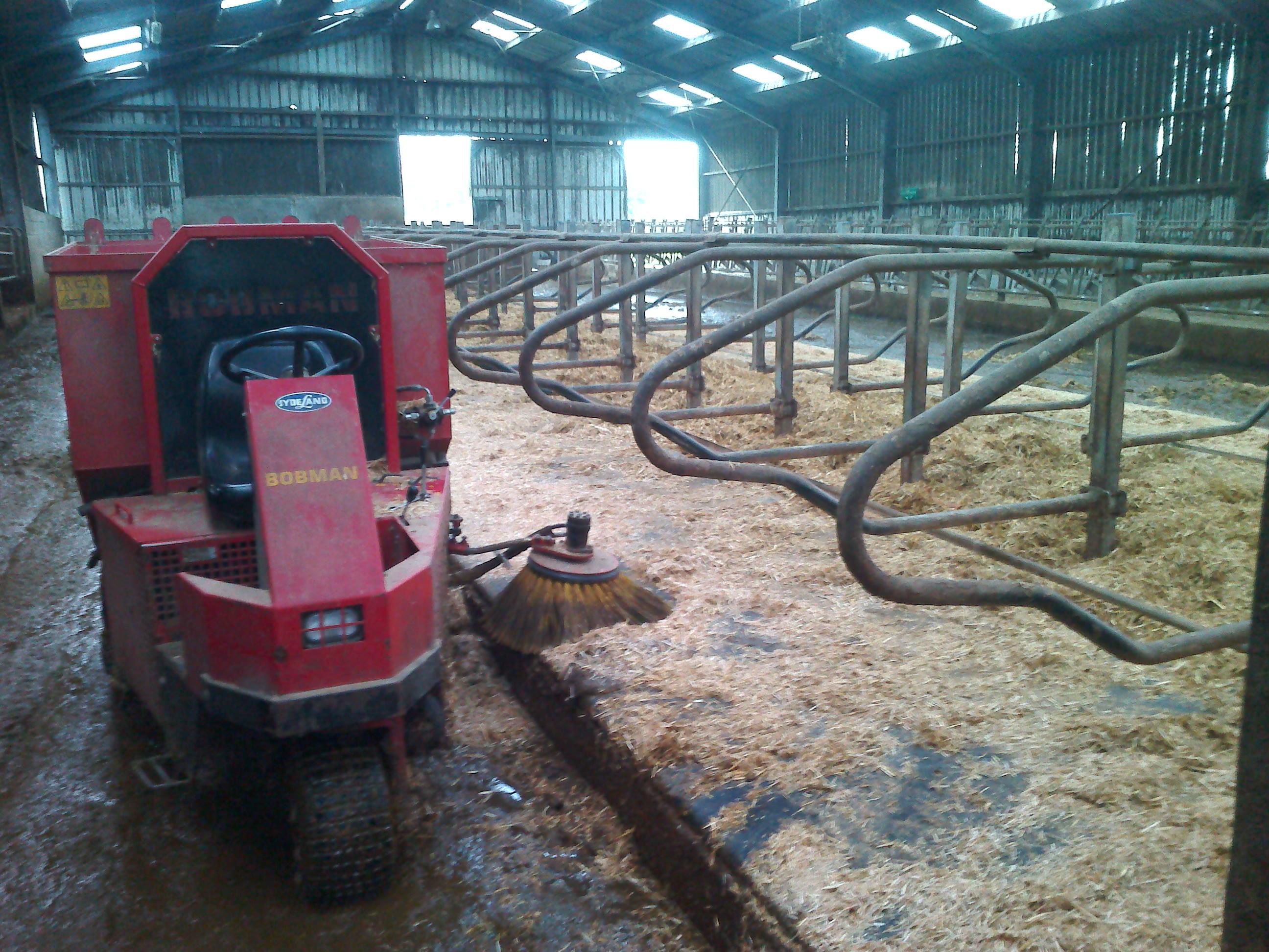 en janvier gabriel entretient la litière des vaches