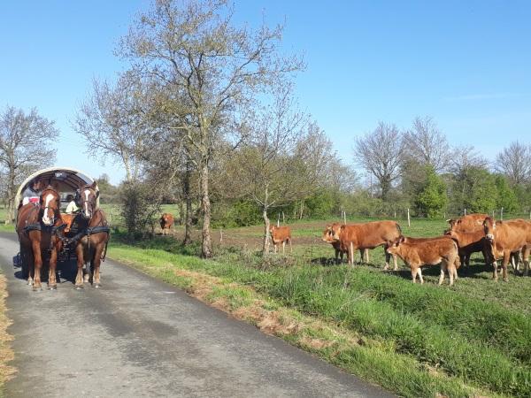 Adeline avril détente avec les enfants et les visiteurs de la ferme pédagogique des voisins