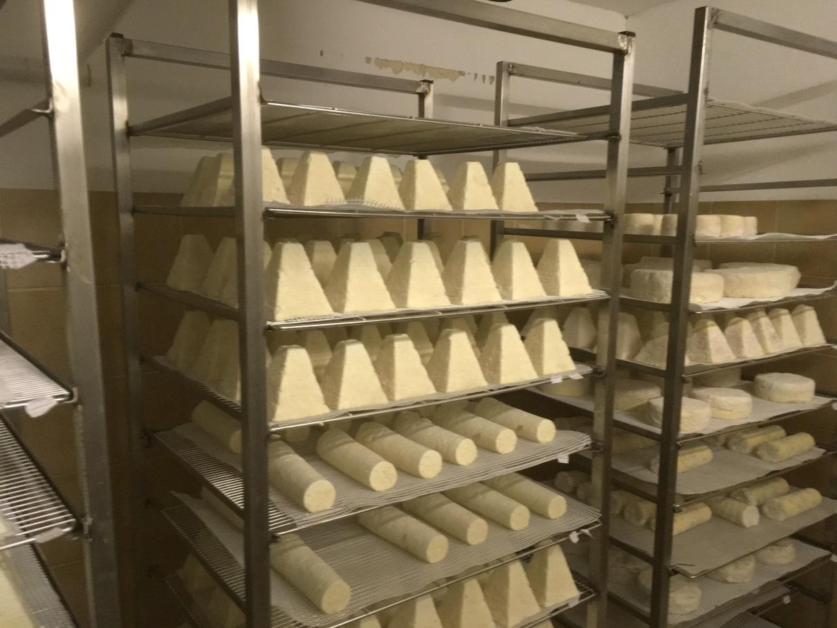 des fromages produits sur la ferme de Nicolas avec du lait de chèvres